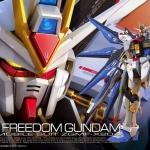 RG 1/144 ZGMF-X20A STRIKE FREEDOM GUNDAM