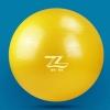 (พร้อมส่ง) บอลโยคะ Z ขนาด 65CM หนาพิเศษ รับน้ำหนักมากกว่า 300