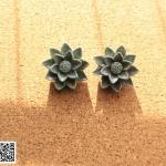 ต่างหูหนีบ Clip on Earrings CE79021