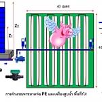 การออกแบบระบบสปริงเกอร์ การคำนวณหาขนาดท่อส่งน้ำและเครื่องสูบน้ำในระบบท่อ PE พื้นที่1ไร่