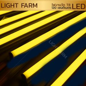 หลอดไฟงานวัด LED (ไฟนิ่งไม่กระพริบ) สีเหลือง / หลอดไฟ T8 หลอดสี