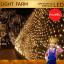ไฟตาข่าย LED ขนาด 3 x 3 เมตร (กระพริบ) ไฟประดับตกแต่ง thumbnail 10