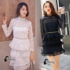 ชุดเดรสเกาหลี พร้อมส่งCristina Luxury Lace Dress