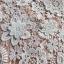 ชุดเดรสเกาหลี พร้อมส่งเดรสผ้าลูกไม้ปักดอกไม้สามมิติสีขาว thumbnail 9