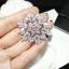 พร้อมส่ง ต่างหู/เข็มกลัด เกล็ดหิมะ Chanel thumbnail 3